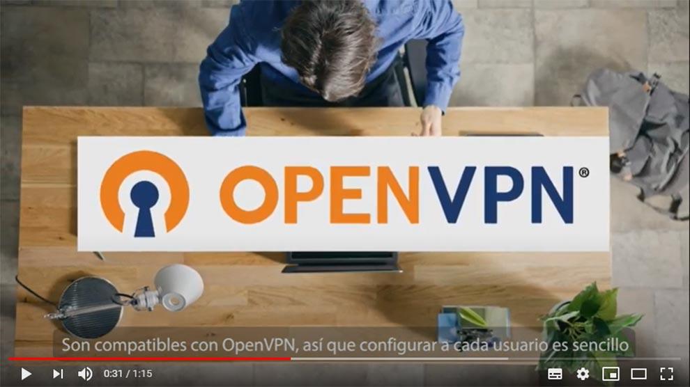 D Link VPN Seguridad acceso teletrabajo remoto router securizado